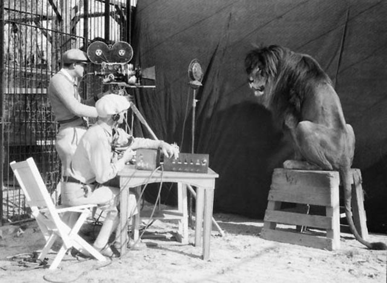 Порео рассказы львы без еазвания фото 372-915