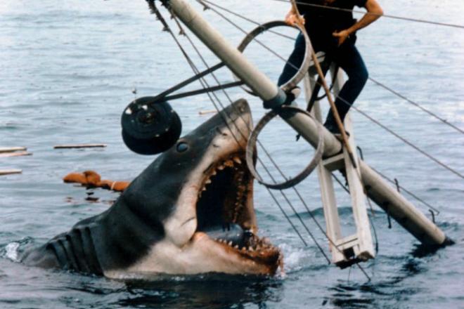 Огромная шестиметровая акула испугала жителей Испании