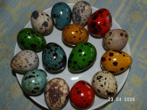 Красивые названия блюд из яиц и грибов