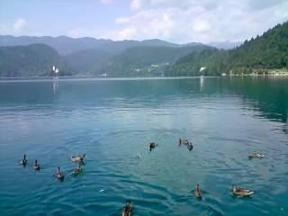 Озеро Блед .Словения.