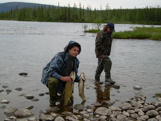 путорана рыбалка