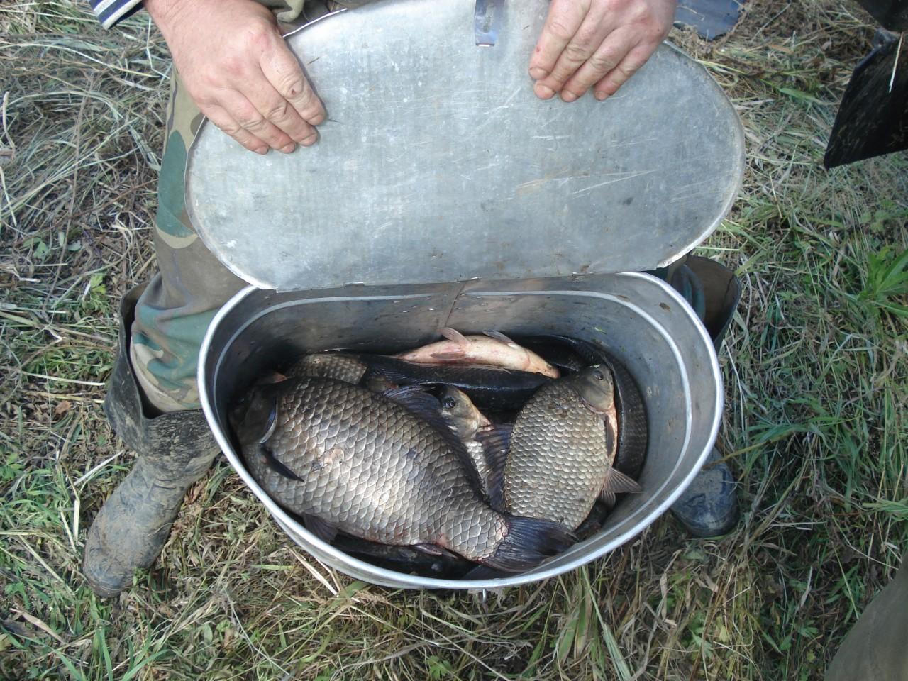 сайт о рыбалке в томске