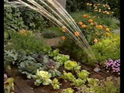 Микрокапельный полив сада. Как сделать самому.