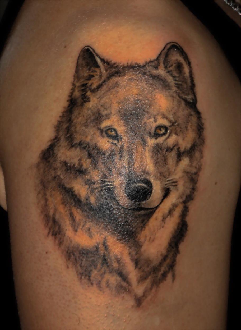 Тату с волчицей фото