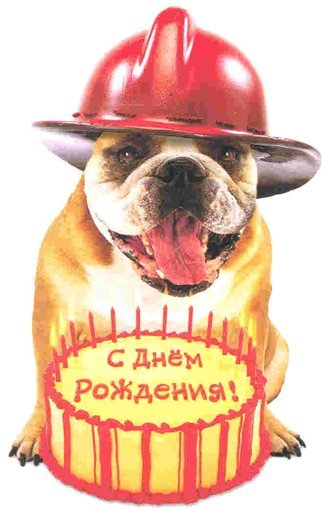 Поздравление на день рождения для рэпера