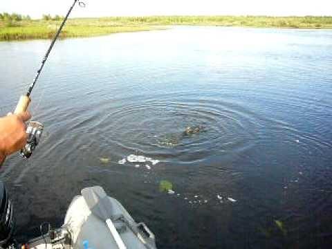 рыбалка в пермском крае озеро чусовское