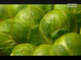 Кухонная химия - фрукты и овощи