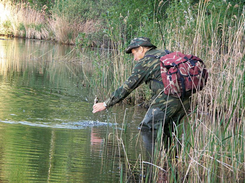 когда начинать ловить плотву на реке