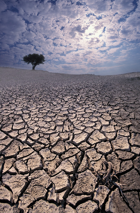 Архив: синоптики: засуха обойдет кузбасс стороной - газета кемерова