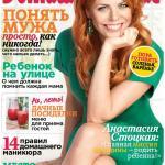 Домашний очаг № 8 2013