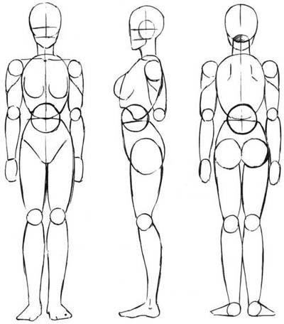 16 необычных фактов о человеческом теле