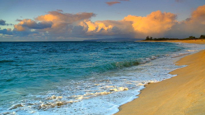 Лающий пляж на Гавайях.
