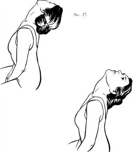 Упражнения на переднюю поверхность шеи
