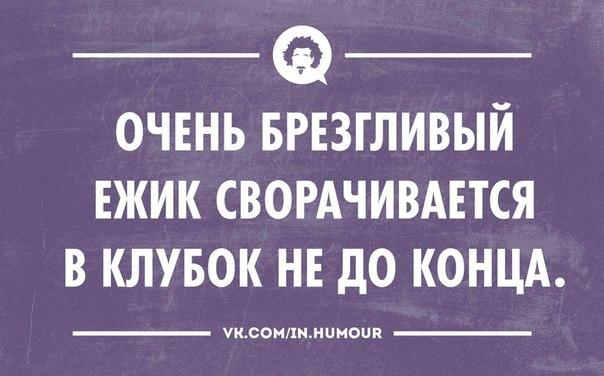 ПРИКОЛЬНЫЕ ФРАЗЫ В ОТКРЫТКАХ.
