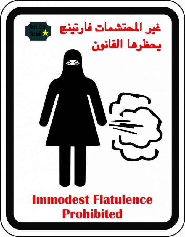 Депутаты запретили женщинам пукать