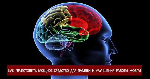 Как приготовить мощное средство для памяти и улучшения работы мозга