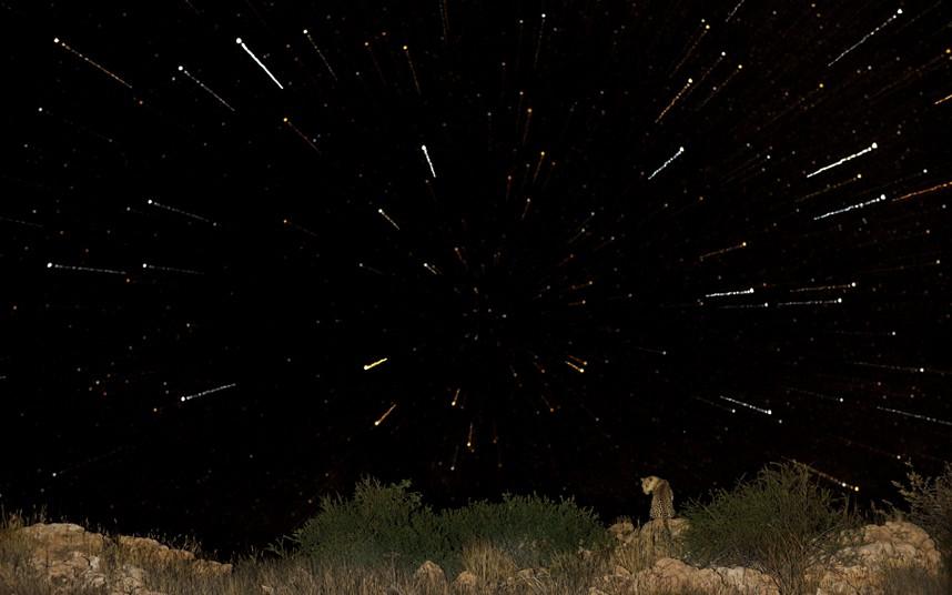 tyomniestoronikalaxari 17 Темные стороны пустыни Калахари