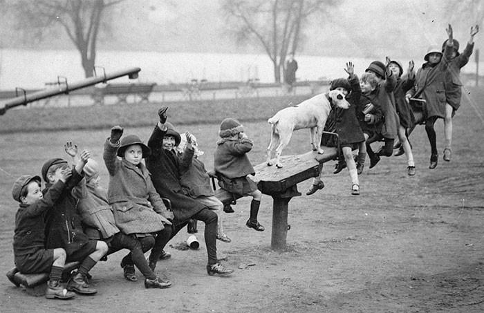 7. Даже собака залезла на качели, Нортгемптоншир детство, прошлое, фотография