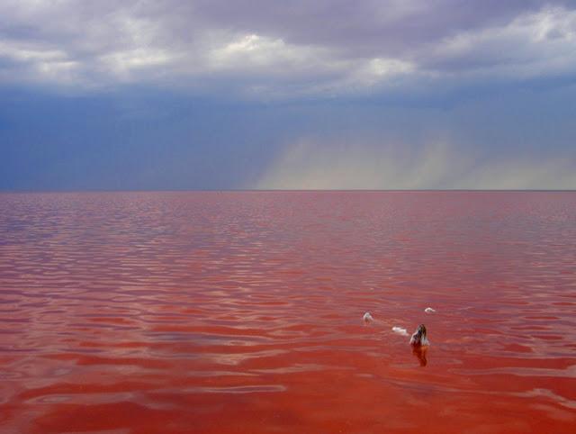 Озеро Эльтон, Волгоградская …
