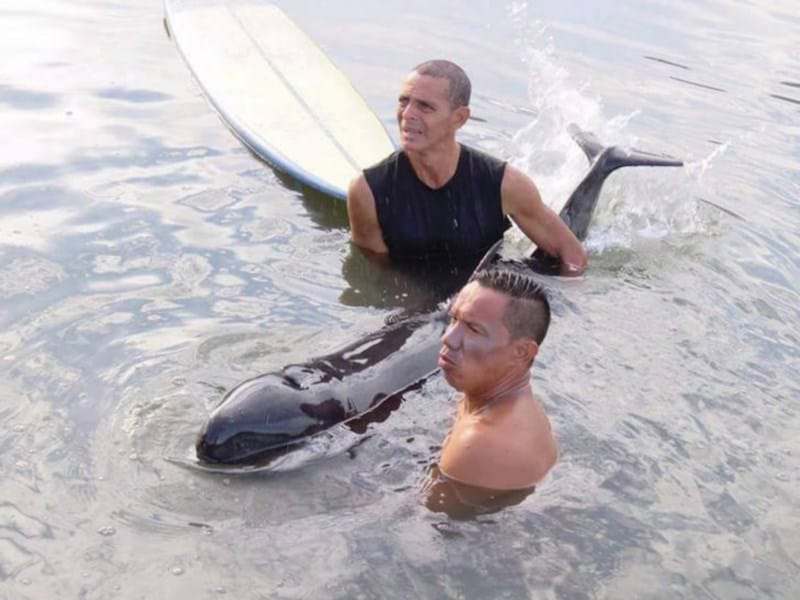03-surfistas-delfin