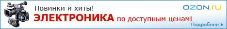 OZON.ru – флагман электронной коммерции Рунета