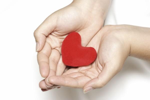 Лечение заболеваний сердечнососудистой системы травами