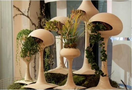 дизайн интерьера дома и кухни