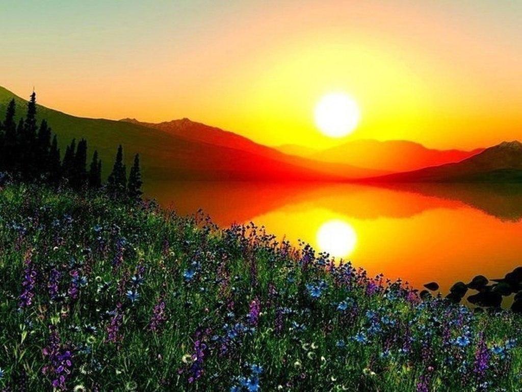 Подарок - Восход Солнца...