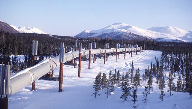 На Аляске заявили, что штат был бы более развитым под управлением Москвы