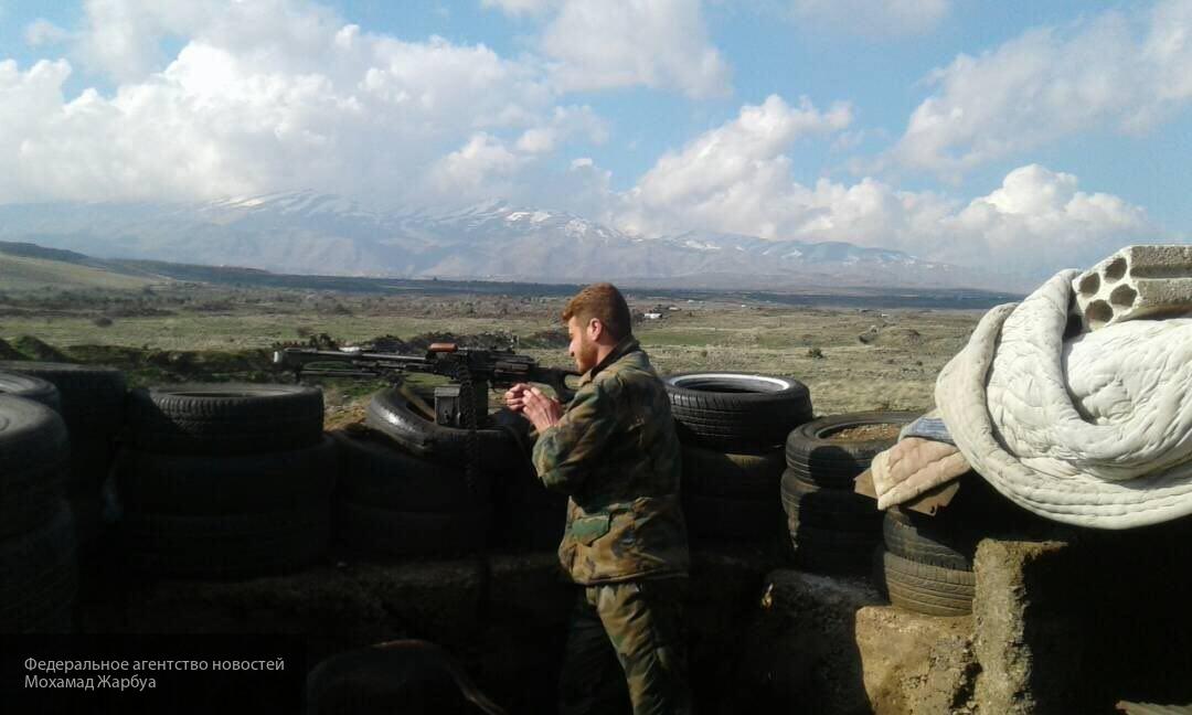 Der Spiegel опроверг информацию о гибели сотен российских добровольцев от авиаударов США в Сирии