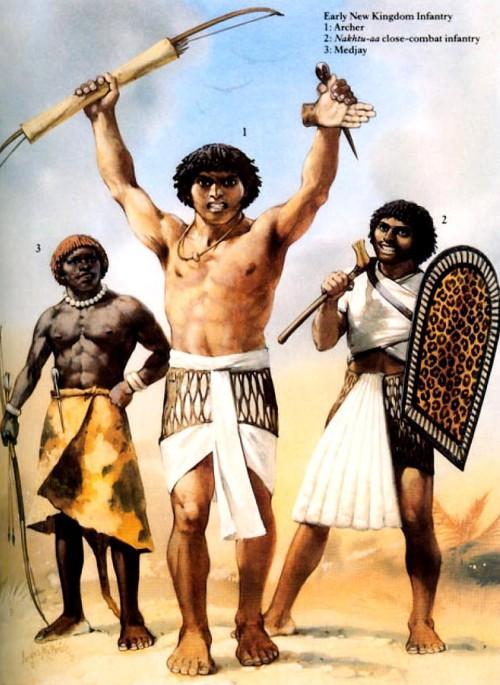 "Пехота раннего Нового Царства: 1 - лучник; 2 - ""накхту-аа"" - тяжелый пехотинец; 3 - маджай."