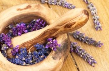 Лекарственные травы помогут в борьбе с гинекологическими болезнями