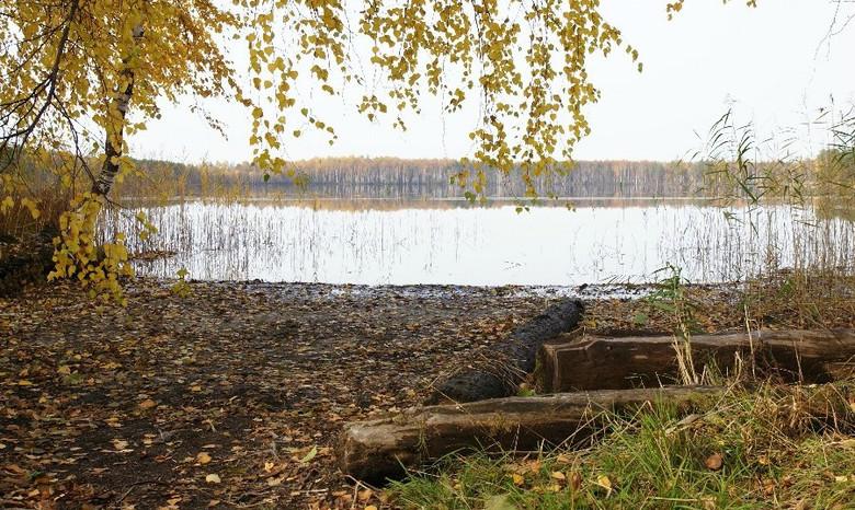 Озеро Малое Плотово: На нем регулярно появляется и пропадает таинственный остров
