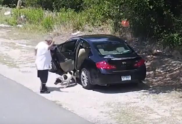 Мерзавца, который высадил из авто собаку и уехал, нашли по видео и задержали