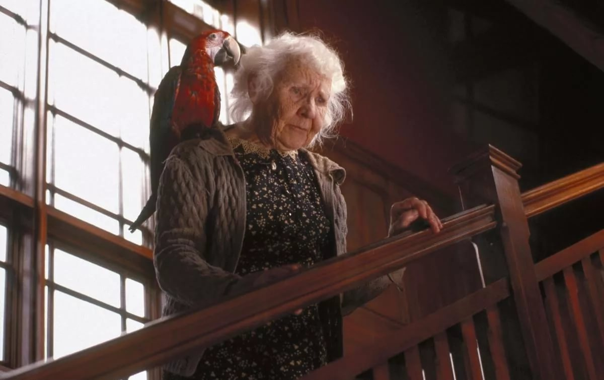 Хитрожопая бабка