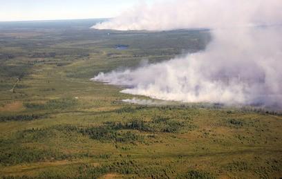 Пожары охватили более 170 тысяч гектаров леса в России