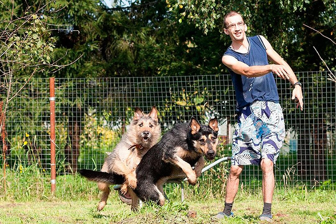 Ради помощи бездомным собака…