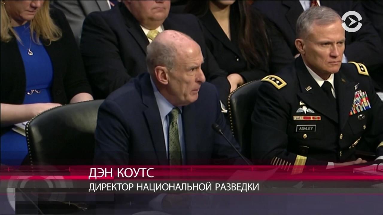 Сирия 2019: Оценка национальной разведки США