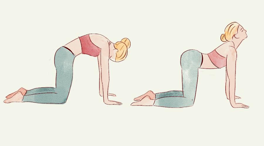 3 вечерних упражнения для здоровья позвоночника