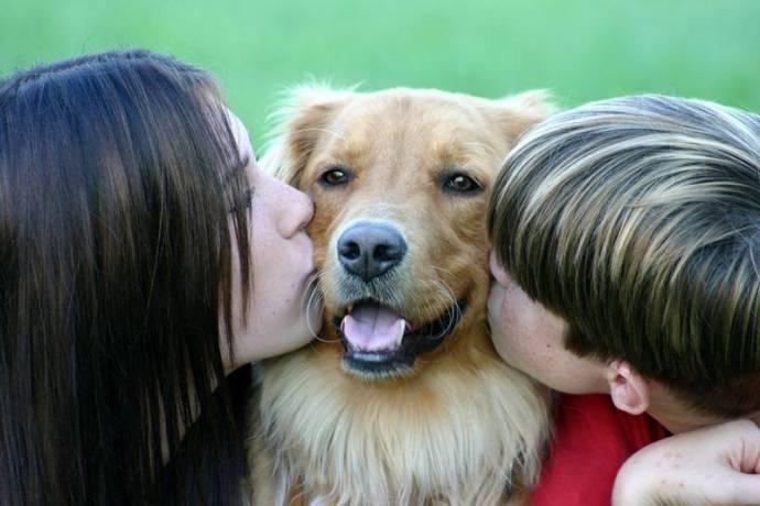 Имеющий собаку владеет сокровищем