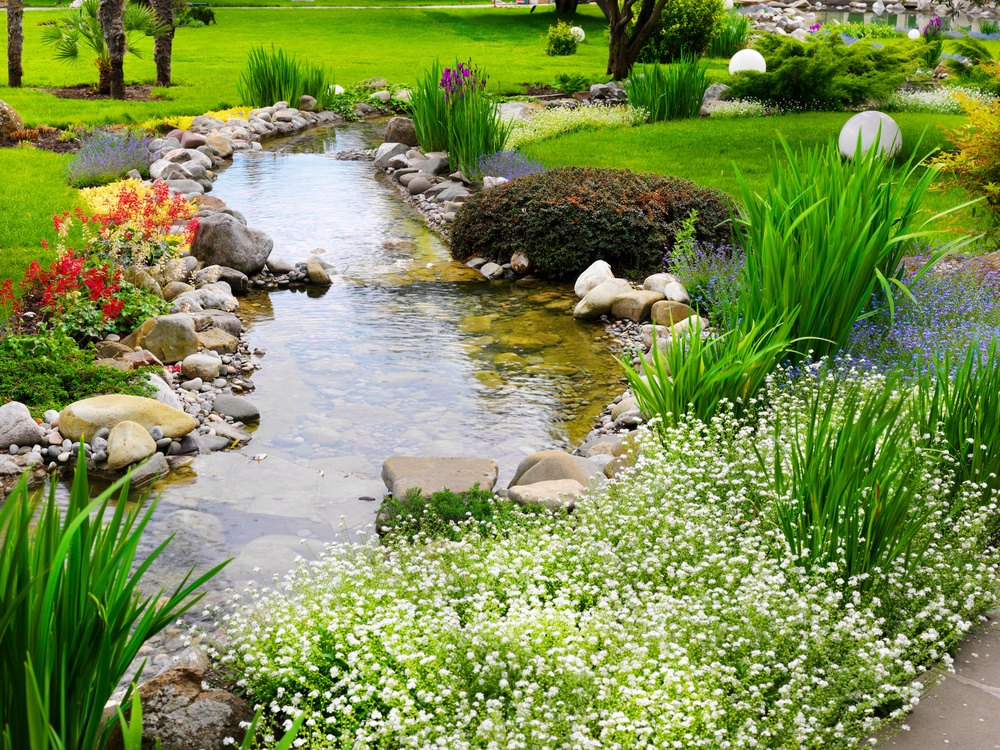 Пруд и ручей на участке