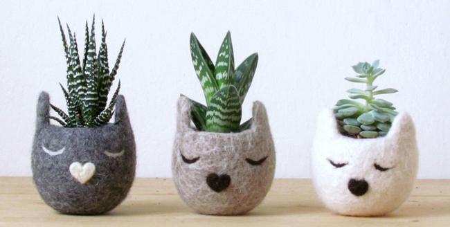 12 натуральных альтернатив горшкам для комнатных растений
