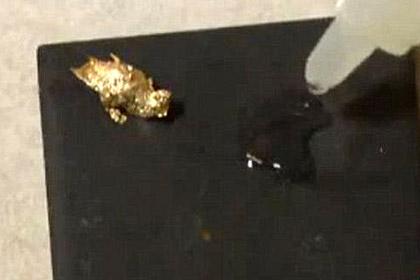 Американцев напугали кусочки золота в воде из-под крана