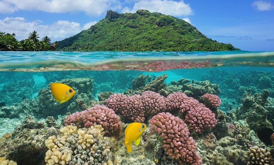 Почему туристы не хотят ехать на Маршалловы острова, хотя природа здесь как на Бора-Бора
