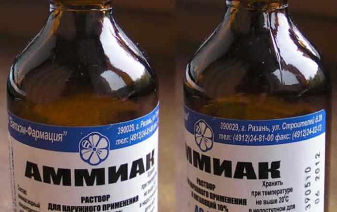 Жизнь без моли: 10 способов отпугнуть врага без применения химических средств