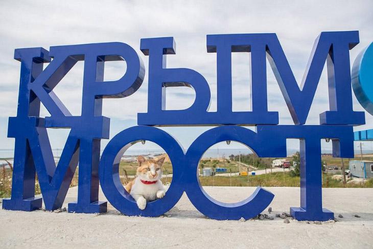Крымский мост: как продвигается строительство