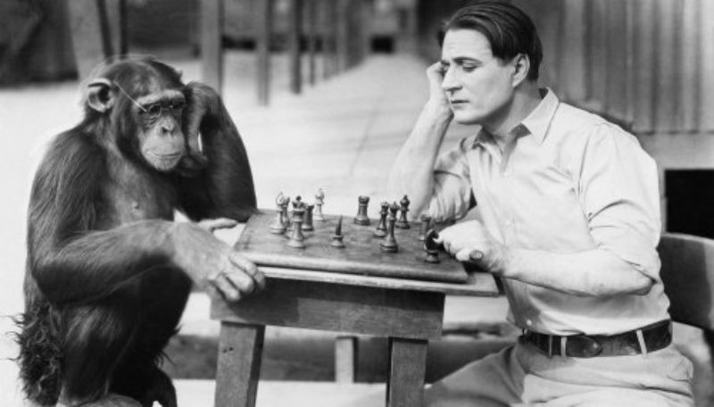 В США 100 лет назад скрестили человека и шимпанзе