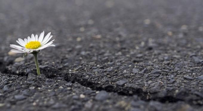 Пережитая травма учит нас больше ценить жизнь