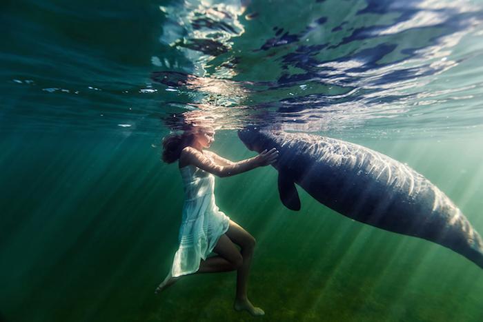 Невероятные подводные истории на фотографиях Елены Калис.