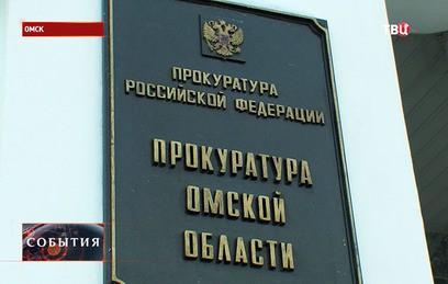 Омские депутаты не видят ничего плохого в женах-помощниках